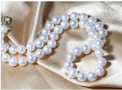 Picture of Tear of Sea White Freshwater Pearl Short Necklace